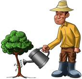 Norwood Park – Tree watering: August 30 at 7pm